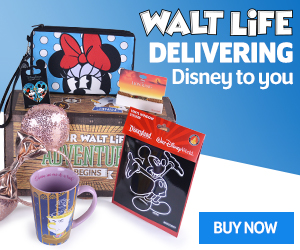 Walt Life - A Monthly Disney Subscription Boxes