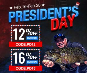12% OFF on Piscifun President's Day Deal