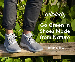 Allbirds Sustainable Shoes