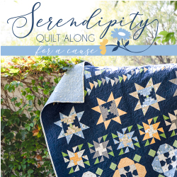 Serendipity Charity Quilt Along  2021