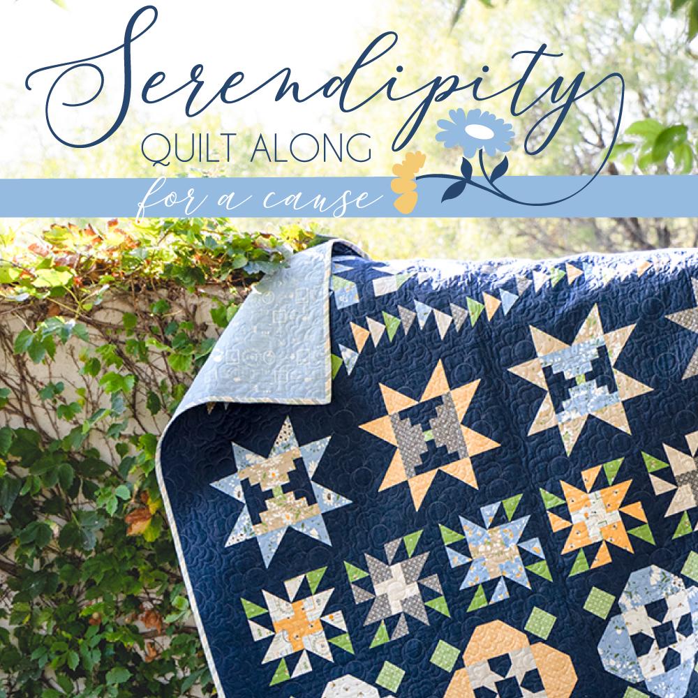 2021 Charity Quilt, Serendipity Quilt Along