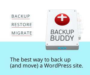 iThemes Backup Buddy banner ad