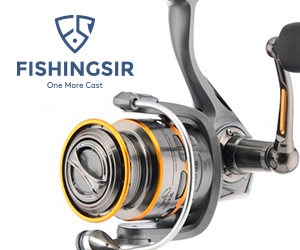 Shimano Sonora FB Aluminium 4+1 BB Spinning Fishing Reel