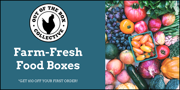 Farm Fresh Food Boxes by Out of the Box Collective
