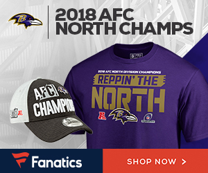 Baltimore Ravens 2018 AFC North Champs Gear