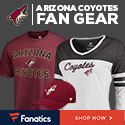 Shop for Arizona Coyotes Gear at Fanatics.com