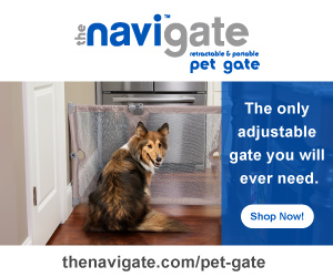 Bring This Travel Pet Safety Gate With You Wherever You Go