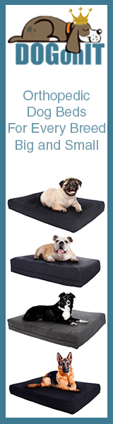 Orthopedic Dog Beds for Every Breed Big and Small