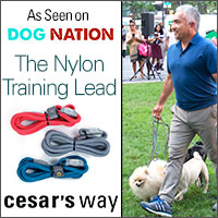 Nylon slip collar lead- Designed as a training aid for walking your dog, this lead offers greater control and provides the ability to give a firm yet quick and gentle correction that eases up when you release the pressure.