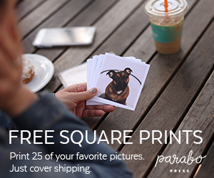 Free Square Photo Prints