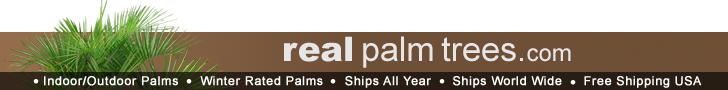 Click Here to Support The Garden Oralce with Your Purchases from RealPalmTrees.com - The Web's Largest Selection of Indoor and Outdoor Live Palm Trees Shipped Direct to You!