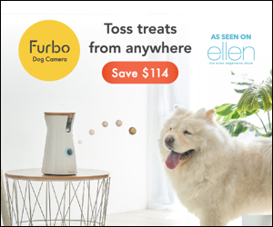 Furbo Dog Camera - Christmas Deals & Coupons