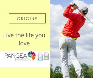Pangea Origins