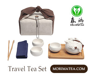 Best Travel with Tea Gong Fu Set