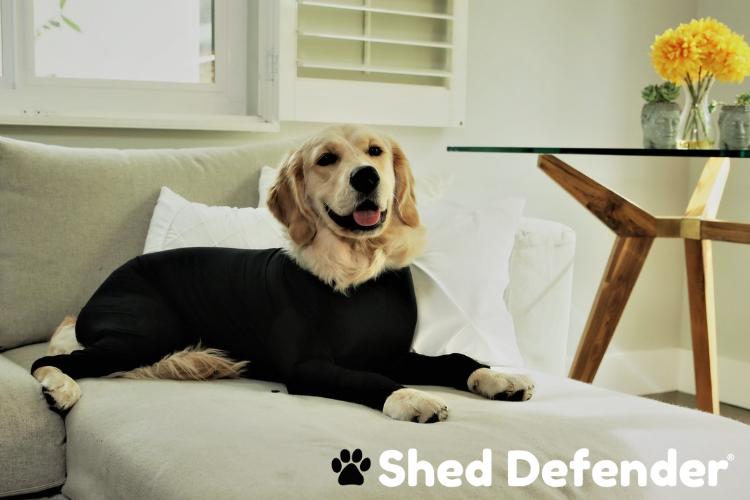 Shed defender dog onsie