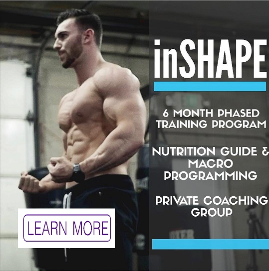 INSHAPE training program
