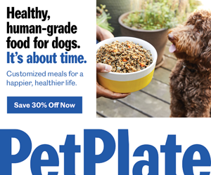 Healty Dog Food Furreal