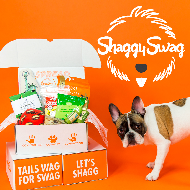 French Bulldog with Shaggy Swag Box