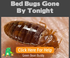 Bed Bugs Gone By Tonight