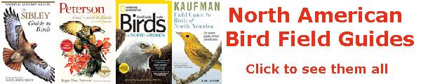 Birding Field Guides