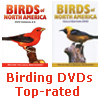 Thayer Birding Software DVDs