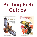 Find the top-selling Birding Field Guides