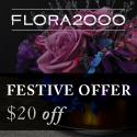Festive Discounts 2010