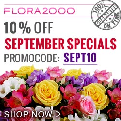 Flowers Discount Code Check Out These Discount Codes