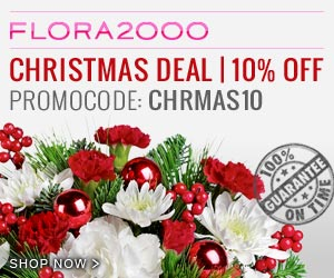 Flora2000 Christmas Collection 10% Off