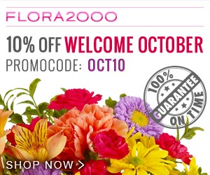 Welcome October with 10% Off. Use Code OCT10.