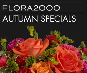 View the Autumn Collection