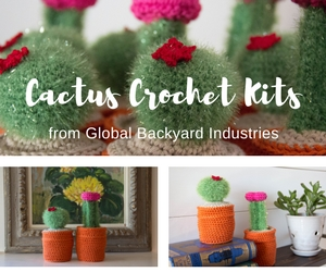 All-inclusive cactus crochet kits