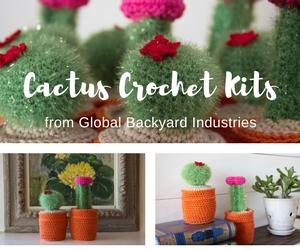 All-inclusive cactus crochet kits