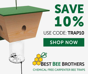 Save 10% Today!