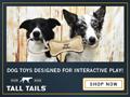 Shop our irresistibly fun dog toys!