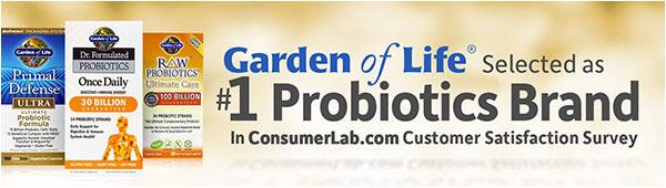 Gol Probiotic 600