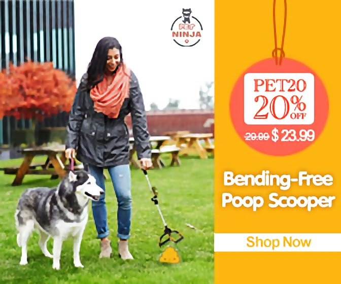 Bending-Free Poop Scooper
