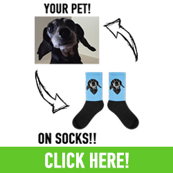 Every Order Sold Helps Print Your Pet Donate To Animals In Need