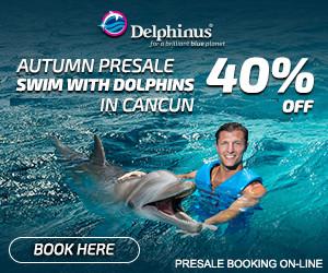 nager avec les dauphins au delphinus mexique