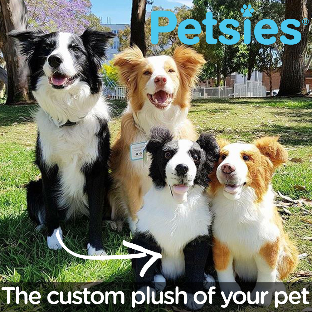 Petsies - custom stuffed animals of your pets