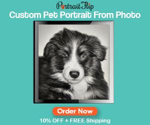 Dog Charcoal Portrait 300x250
