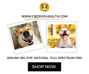 CBD Dog Health Natural Products