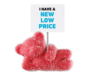 Relax Bears NEW Lower Price