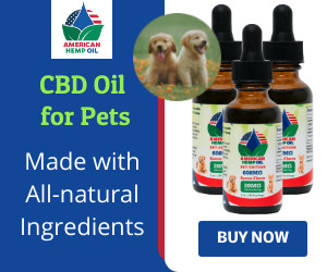 CBD Oil for Pets Made with All - Naturel Ingredients