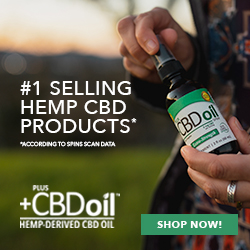CBD Spray Extra Virgin Olive Oil