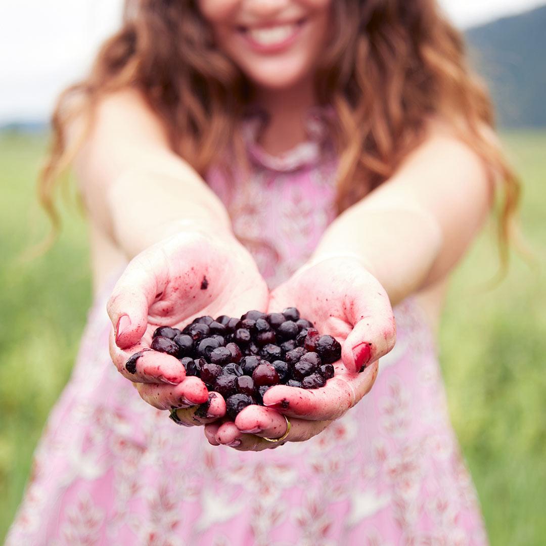 Wild Huckleberry Peel