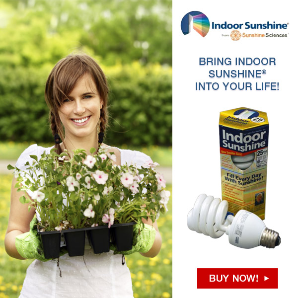 Great for Indoor Gardens