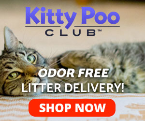 KittyPoo Club