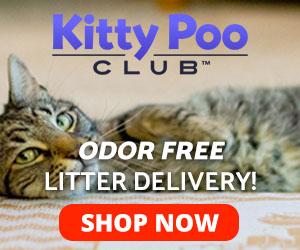 KittyPoo Club