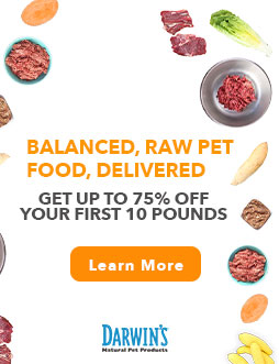 Top 5 Reasons Why Darwin's Raw Dog Food is Great for Big Dogs Tell me if this is you: